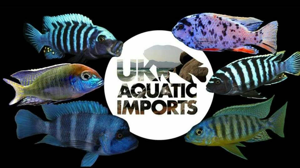 uk aquatic imports