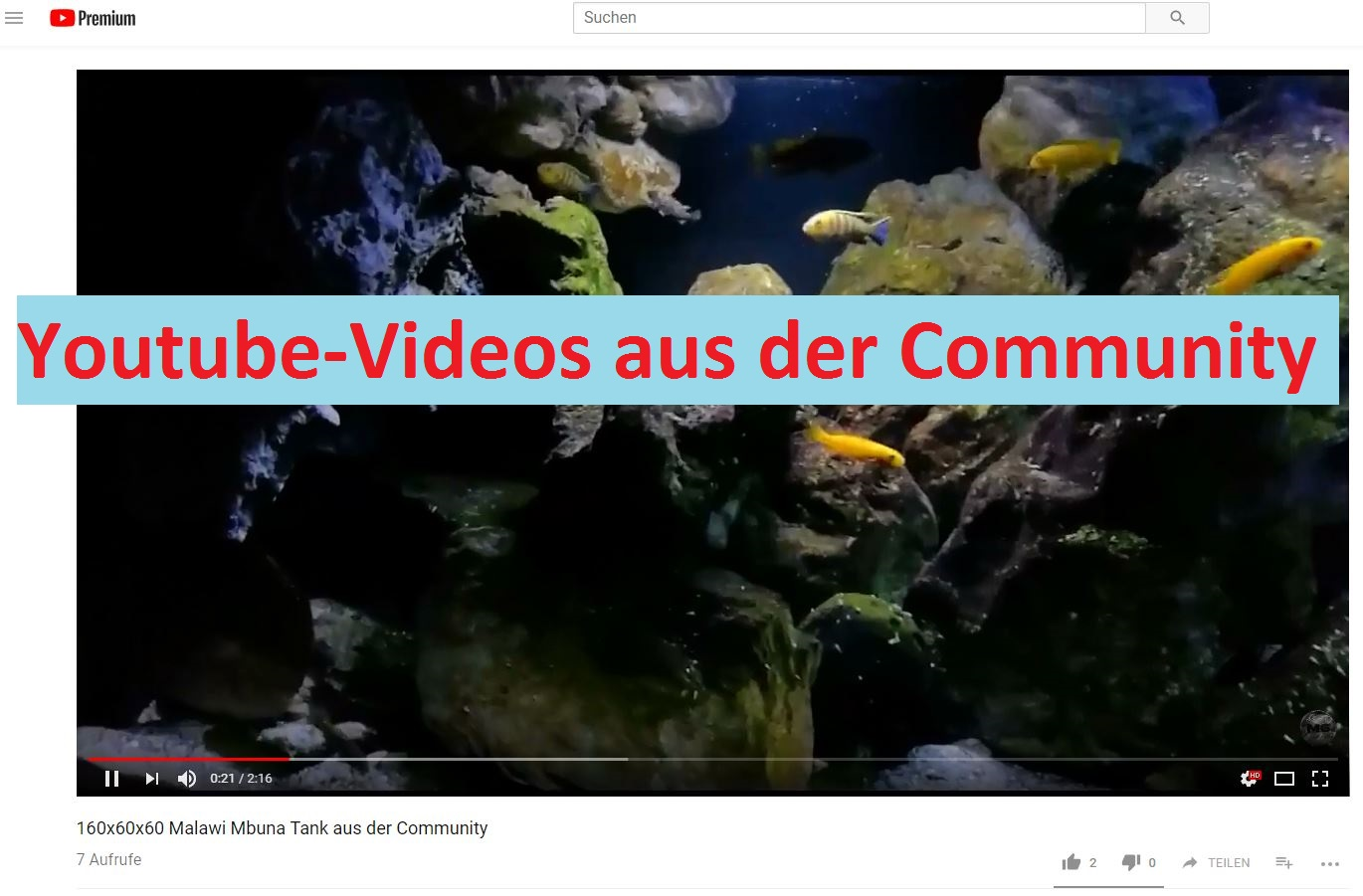 YT community videos marcel roßdeutscher2